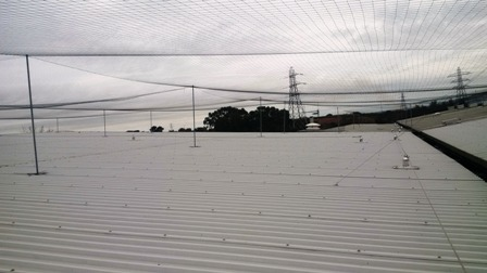 Bird Pest Control Netting systems preventing gulls, pigeons and other pests from nesting on your roofs.